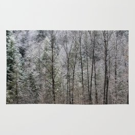 Snow Dusted Trees, No. 1 Rug