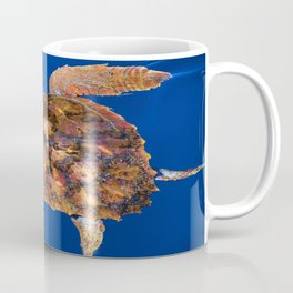 Loggerhead turtle Coffee Mug