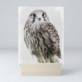 small hawk portrait Mini Art Print