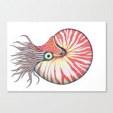 Nautilus Canvas Print
