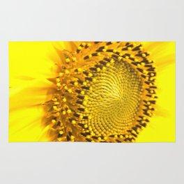 sunflower photograph Rug