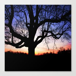 Darkness Against Sunset Canvas Print