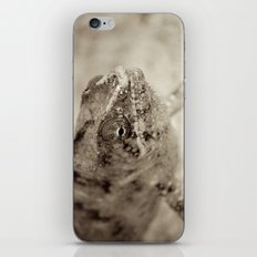Surprise Me iPhone & iPod Skin