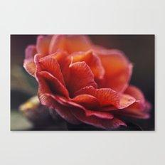 Fiery Petals Canvas Print