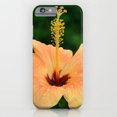 Peach Hibiscus Slim Case iPhone 6s