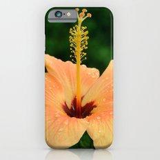 Peach Hibiscus iPhone 6s Slim Case