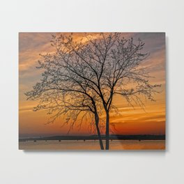 Crimson Branches Metal Print