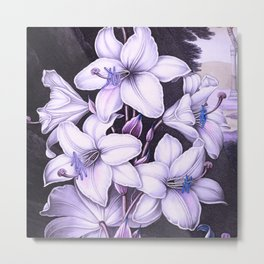 The White Lily w/ Variegated-leaves Lavender Temple of Flora Metal Print