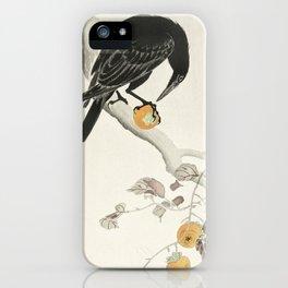 Koson Ohara - Crow with Kaki Fruit - Japanese Vintage Ukiyo-e Woodblock Painting iPhone Case
