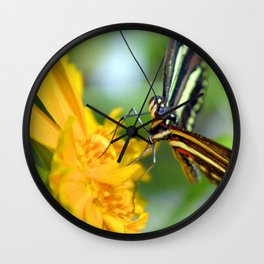 The Zebra Longwing Wall Clock