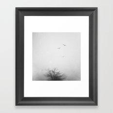 Gulls Framed Art Print