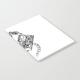 ANGLES Notebook