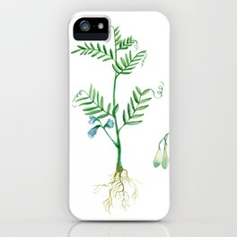 Lentil iPhone Case