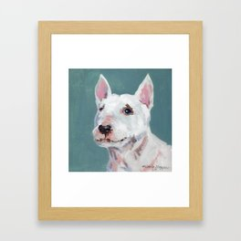 Mini Bull Terrier Framed Art Print