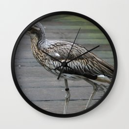 Bush stone-curlew Wall Clock