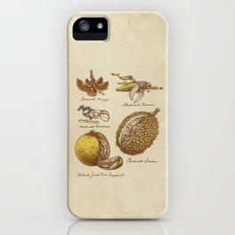 Steampunk Fruit  iPhone Case