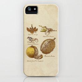 Steampunk Fruit  iPhone Case