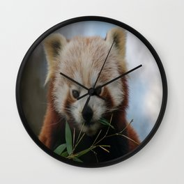 Beautiful Red Panda Wall Clock