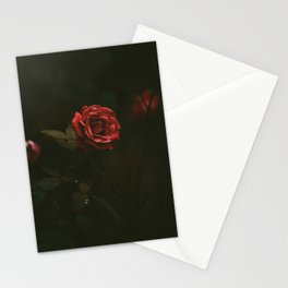 Red Rose Sensual Dark Floral Photo Stationery Cards