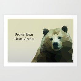 Low Poly Bear Art Print