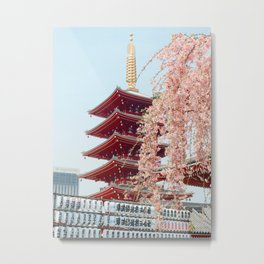 Pink Flowers in Front of Temple (Color) Metal Print