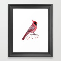 Red Cradinal Framed Art Print