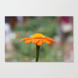 Orange Cone Canvas Print