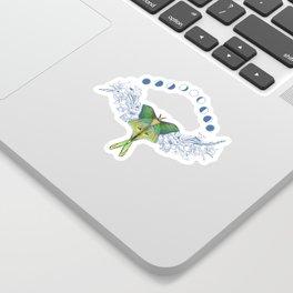 Luna moth moon phase Sticker