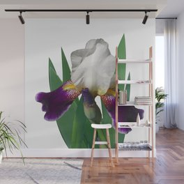 Violet and white Iris 'Wabash' Wall Mural