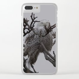 Snowy Owl in Tree Clear iPhone Case