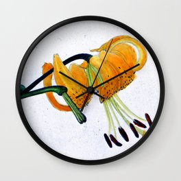 Orange Flower Botanical Illustration - Illustration botanique d'une fleur orange  Wall Clock