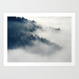 Mountain Fog and Forest Photo Art Print