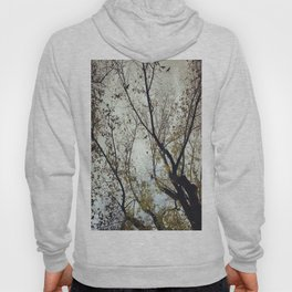 Tree of Birds Hoody