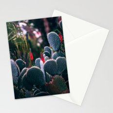Paddle Cactus Stationery Cards