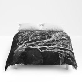 Black Rock II Comforters