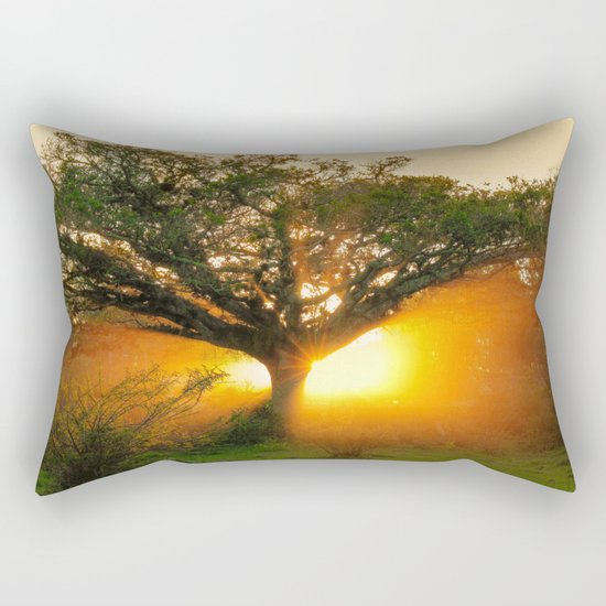 The Rebirth of Light Rectangular Pillow