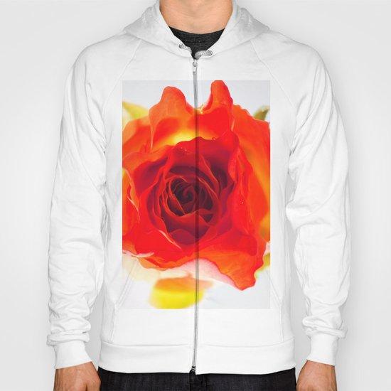Inside the rose Hoody