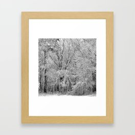 Snow Forest Framed Art Print
