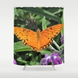 A Gulf Fritillary Shows Wear and Tear Shower Curtain