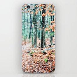 Autumn Woodland iPhone Skin