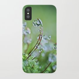 When you hear the fairies sing, you'll know you found my secret hiding place... iPhone Case