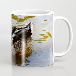 Duck swimming in golden water Coffee Mug