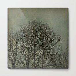 The Eagle Tree Metal Print