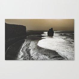 Black sand, Iceland Canvas Print