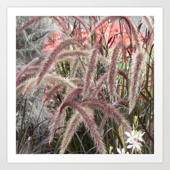 lovely garden pics 04 Art Print