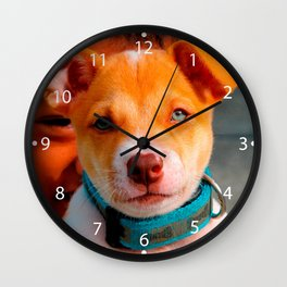 Gold and White Puppy Dog with Blue Collar Wall Clock