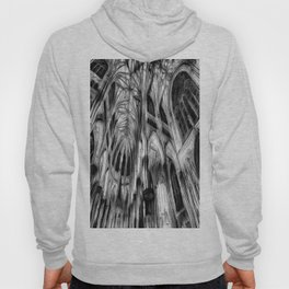 The Haunted Cathedral Hoody