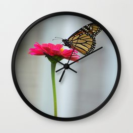 Butterfly on Pink Zinnia Flower Wall Clock