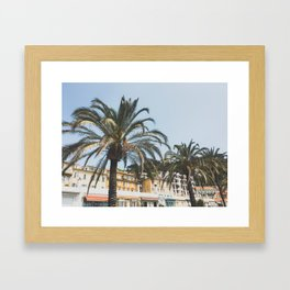 Cote d'Azur Palms Framed Art Print