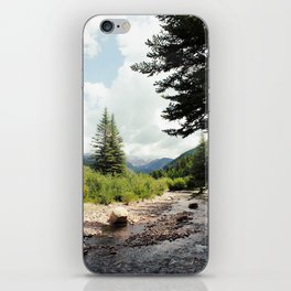 Vail Nature Center iPhone Skin